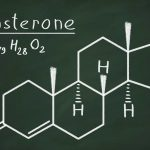 testosterone food