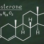 testosterone food