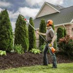 affordable tree removal service near me